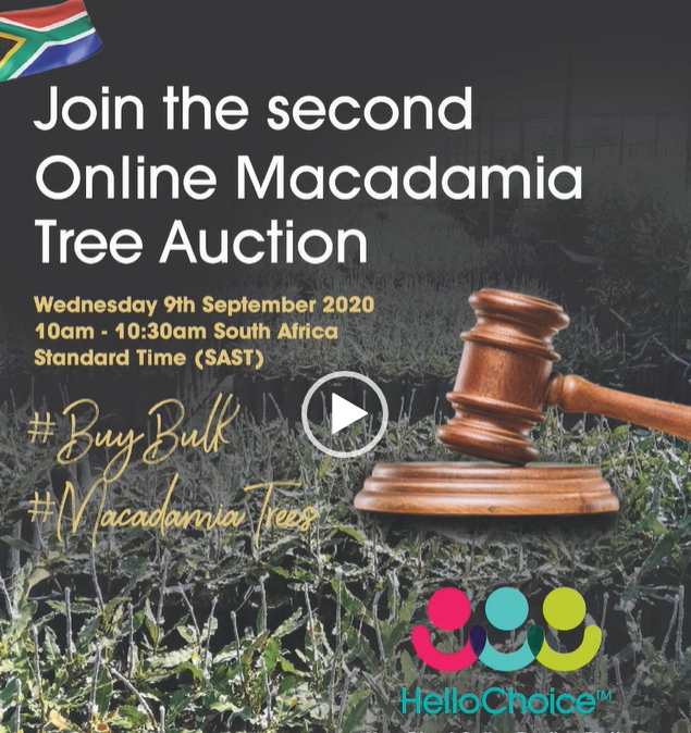 Second Mac Tree Auction 9 September 2020