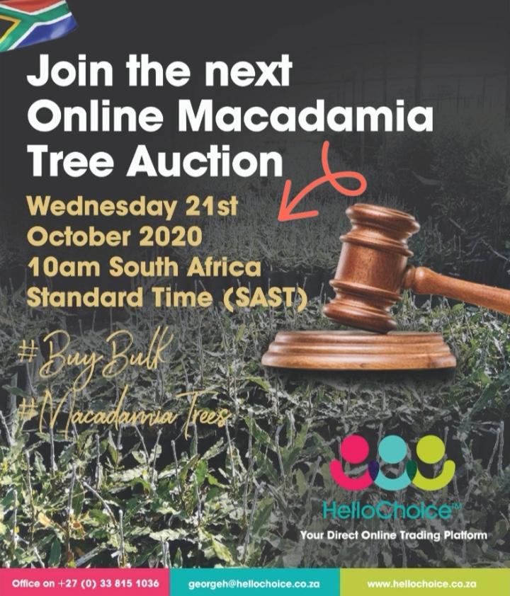 Macadamia Tree Auction 21/10/2020