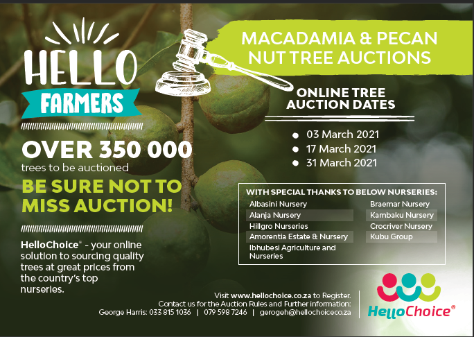 HelloChoice Macadamia & Pecan Nut Tree Auction