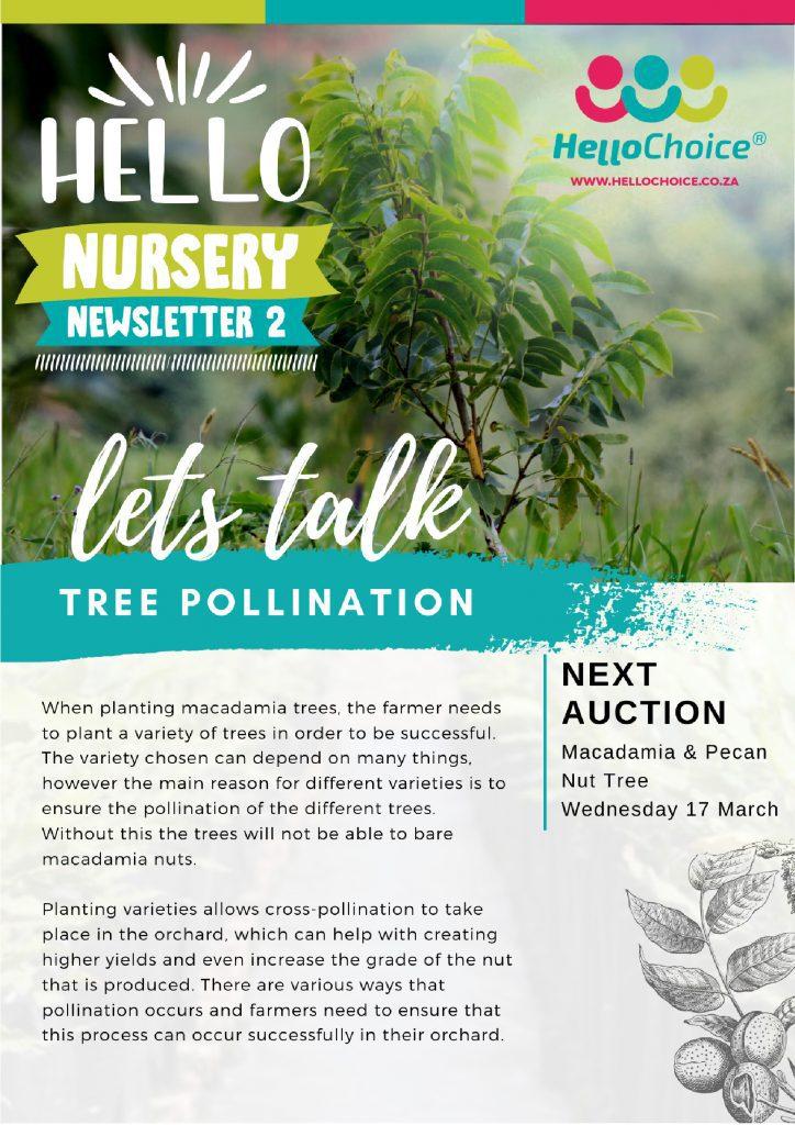 HelloChoice Nursery Newsletter 2