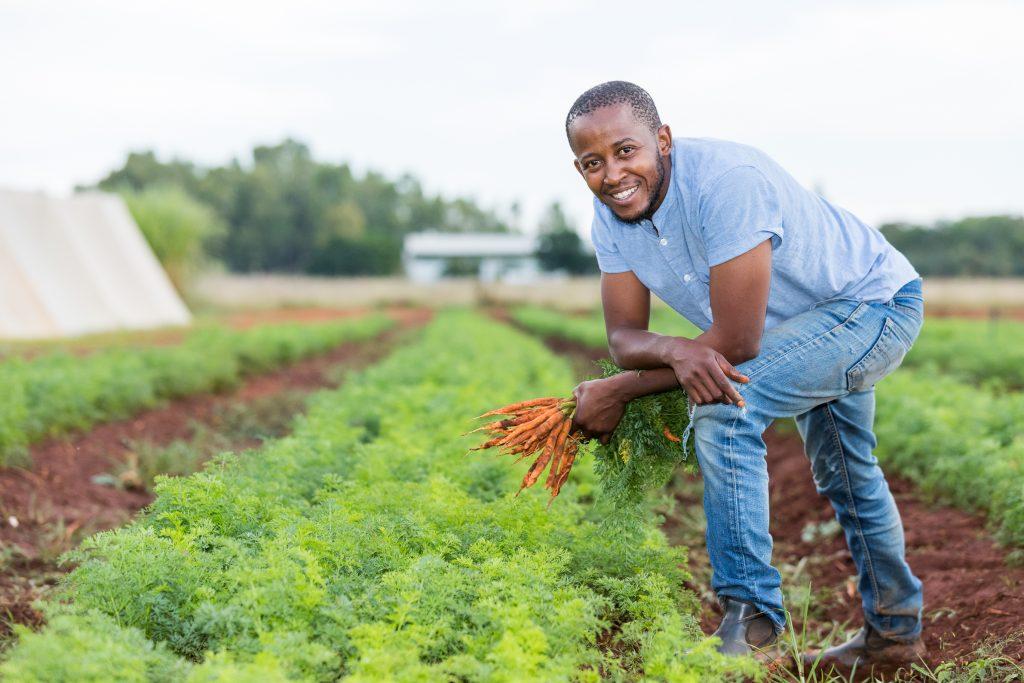 Germiston farmer provides food relief, accesses new market through OneFarm Share